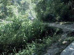 Camino al chorro (miguelandresyb) Tags: iphotooriginal salazar