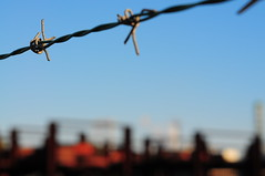 barbed wire (Arlon R) Tags: ogimachi