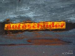 Wasserzeichen / watermark (Ellenore56) Tags: street schnee winter light red snow color reflection rot water weather yellow puddle lumix licht pond wasser cloudy slush panasonic gelb environment imagination farbe spiegelung dull thaw wetter watermark januar ecological reflektion slop clouded matsch umwelt thawing pftze carsign tauwetter wasserzeichen strase schneematsch trbe markingofnameplates tz7 autoschilder snowslush eveningscenery aggregatzustand dmctz7 panasoniclumixdmctz7 ellenore56 unserwissenisteintropfen aggregatestate 18012010 carmarker