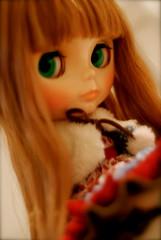 Anemone - Beatrice Lace