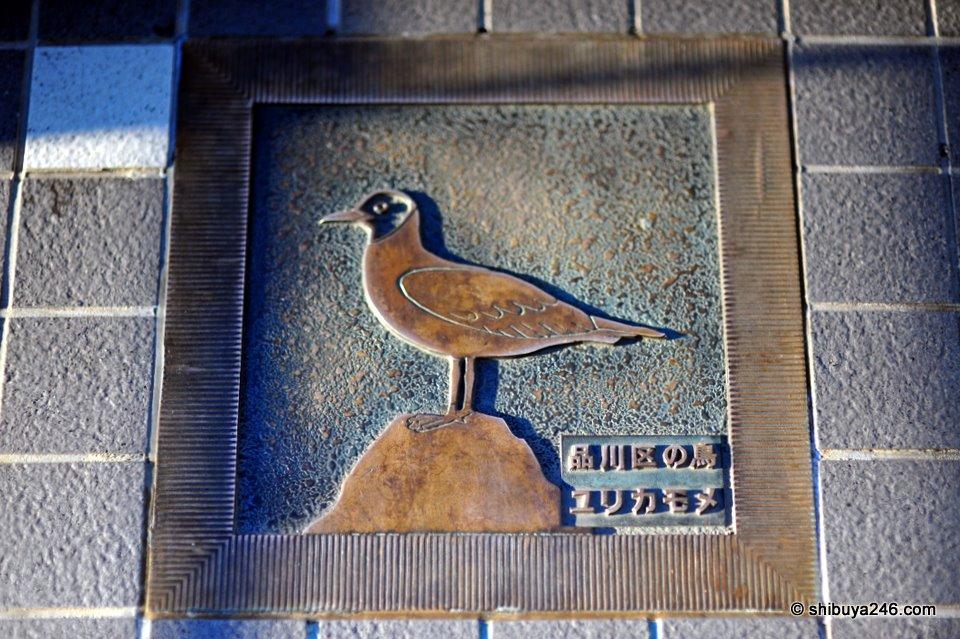 Bird of Shinagawa-ku, Yurikamome.