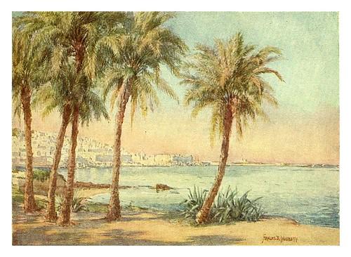 004-Argel desde el jardin de Essai-Algeria and Tunis (1906)-Frances E. Nesbitt