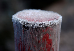 Icy Wood (Frank Wuestefeld) Tags: snowflake wood travel schnee winter red vacation sun white mist snow macro rot ice fog closeup forest canon germany snowflakes eos frost dof nebel bokeh hiking adventure lena creativecommons stick brocken 1855 lowa makro wald wandern raureif harz goslar wernigerode weis torfhaus harzburg cristall pfahl  wolfskin schneeflocke 400d justnatureseries frankwuestefeld germanyseries