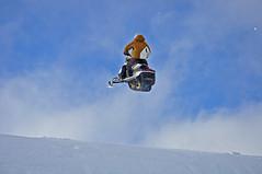 327N FF (kira2011) Tags: lewis hills sleds