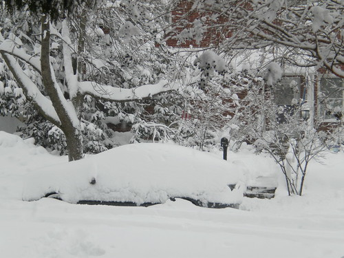 The amount of snow from a blizzard can bury cars and break tree limbs and branches