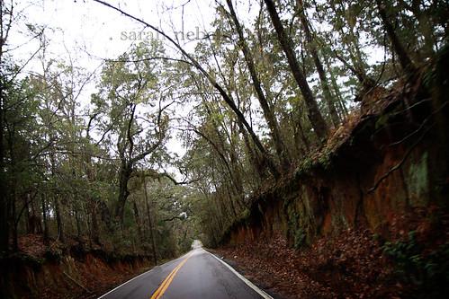 . florida road .