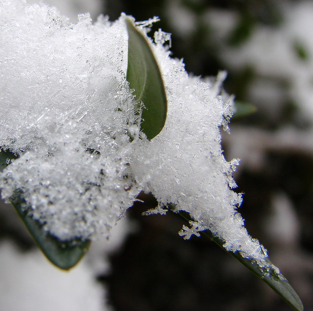 snowflake ornament wedding favor wedding favor burnt