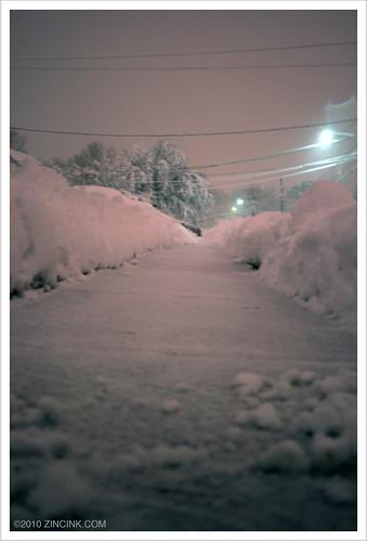 Snow NJ - FEB 2010