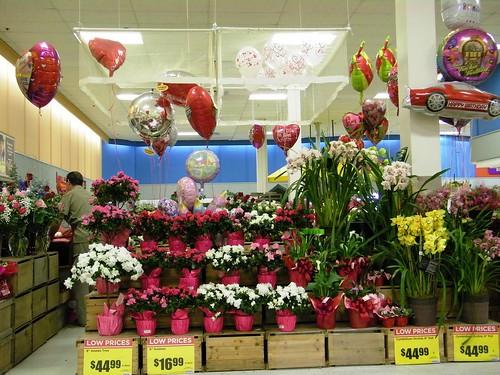 Valentine Center