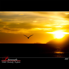 Fly away (_Hadock_) Tags: windows sunset espaa fling sol clouds sunrise de mar fly flying spain mac nikon screensaver 10 background osx horizon creative 7 commons away screen os clauds castro cielo 200 nubes xp vista 18 tamron puesta ubuntu naranja gaviota fondo escritorio android horizont cantabria horizonte pantalla reflejos siete saver volando lynux walpaper urdiales 18200mm d80 orizonte comons mbd80