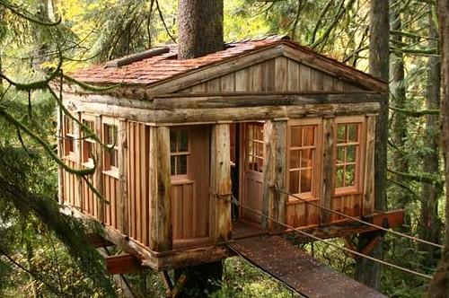 treehousepoint2