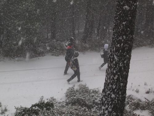 Los Reales nevados (12)