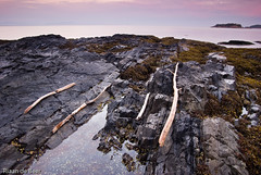 Driftwood Aligned (Riaan de Beer Fine Art Photography) Tags: longexposure sea seascape beach wet water beautiful landscape dawn rocks solitude surf britishcolumbia nobody pacificocean edge bowenisland weathered watersedge rotten rugged scenics moist andygoldsworthy blurredmotion rockycoastline colorimage ruralscene beautyinnature nonurbanscene horizonoverwater attheedgeof