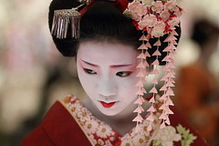 flower / people / portrait / face / japanese / beauty : maiko, kyoto japan / canon 7d    (momoyama) Tags: travel pink flowers red portrait people flower girl beautiful beauty face festival japan canon hair asian japanese kyoto asia traditional culture 85mm maiko geiko geisha 7d   kimono 2010 baikasai ef85mmf18 kanzashi  kamishichiken  plumblossomfestival  umeraku