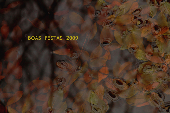 Natal_2009_3