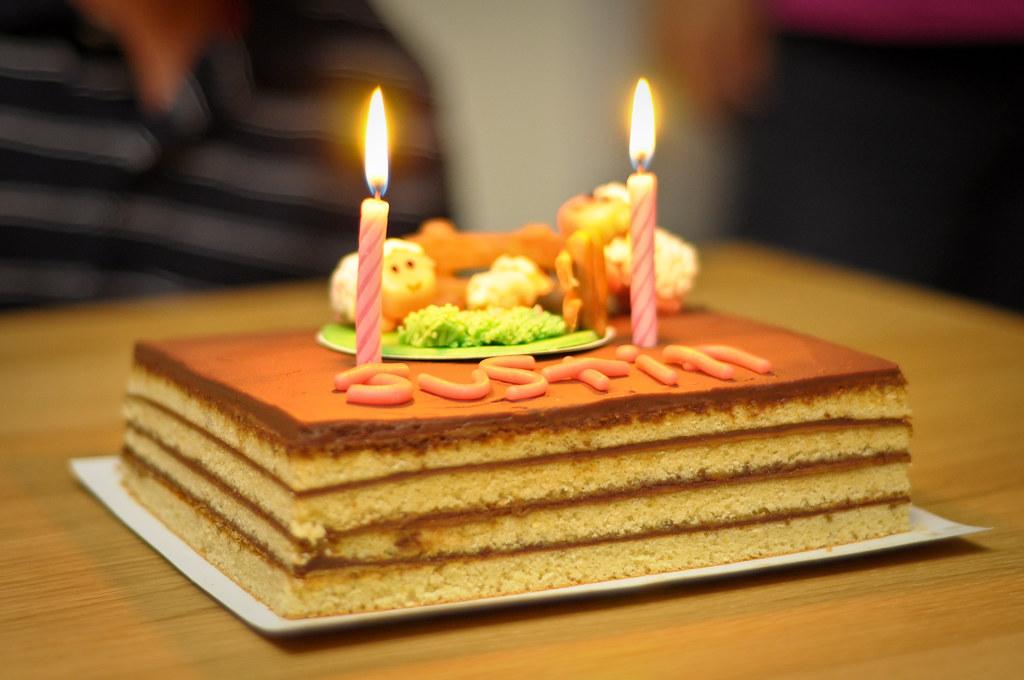 Opera cake + sheep