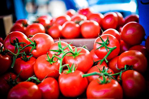 フリー画像| 食べ物| 果物/フルーツ| トマト|        フリー素材|