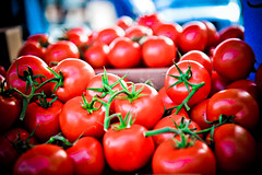 [フリー画像] [食べ物] [果物/フルーツ] [トマト]        [フリー素材]