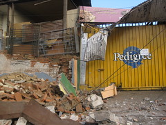 poor (valespincee) Tags: chile earthquake tsunami disaster 1001nights terremoto desastre sunami catastrofe flickrestrellas worldtrekker flickraward terremotochile chileearthquake