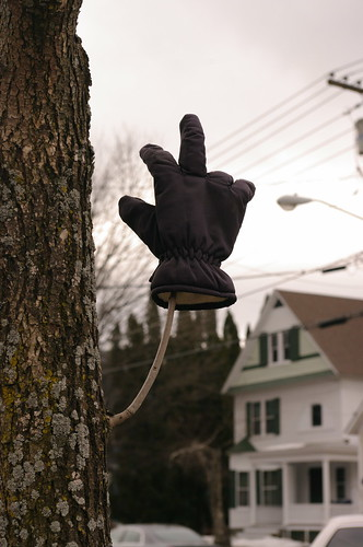 """Hey, wait... Is that tree flipping me off?"""