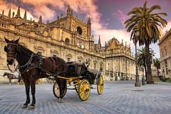 Sevilla (maciej.ka) Tags: coach sevilla spain cathedral seville andalucia espana hackney andaluzja sewilla