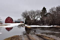 Lodahls, the driveway is under... (pictureapromise) Tags: county bridge snow tree ice water river flooding flood nd abercrombie roadclosed redriver fargo colfax 2010 richland march15 redriverofthenorth galchutt reflectionredriverflood2010 wildriceriverflood2010 redrivervalley2010