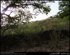 Wadi Shaboon, Dhofar (Shanfari.net) Tags: winter summer lumix raw panasonic oman wadi fz  zufar rw2 salalah sultanate dhofar shabon  khareef  mirbat         governate shaboon   dofar fz38 marbat  fz35 dmcfz35