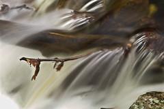 The silky spring waters. (Fernando Farfan.ca) Tags: naturaleza nature waterfall movement agua stream solitude ottawa silk liquid silky cascada  sawork4dwater luskvilleqc longexposurewithdaylight fineartnatureshoots