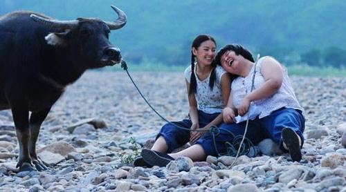 Tổng hợp phim Hồng Kông hài hước nhất từ trước tới nay 4450023491_8864223af0_o