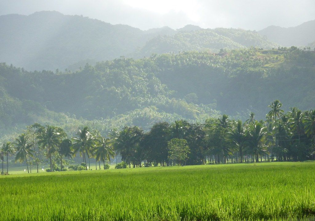Leyte-Liloan (5)