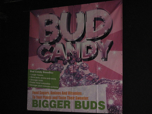 iGrow - Bud Candy