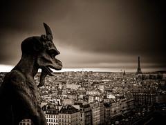 [フリー画像] [人工風景] [オブジェ] [彫刻/彫像] [ガーゴイル] [フランス風景] [パリ] [モノクロ写真]    [フリー素材]