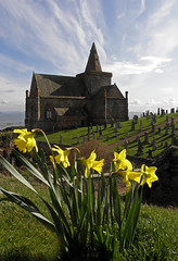 St Monans Church Daffodils 1 (g crawford) Tags: flowers sky cloud flower church clouds scotland skies fife scottish daffodil daffodils crawford scots stmonans churchofscotland monans saintmonans