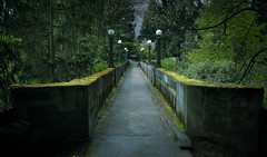 Arboretum Aqueduct (Simple Insomnia) Tags: seattle old bridge history stone dark lights moss dusk historical washingtonparkarboretum arboretumsewertrestle