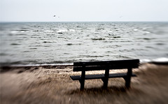 d (sigrun th) Tags: sea favorite color beach nature water beautiful lensbaby strand contrast copenhagen bench spectacular denmark freedom fly nice sand focus heaven peace dof view free vivid peaceful lovely f56 effect danmark kaupmannahfn resund hellerup kbenhavn eyrarsund