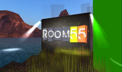 room 55 in second life