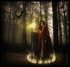 Blend - Wizard of the Forest - versin 1 (balt-arts) Tags: wallpaper tree nature forest photoshop poster wizard magic fantasy raven cristal rune ourtime objectiveart
