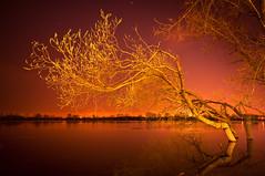 Martian Twilight (Z!KeepeR) Tags: tree water night long exposure ukraine kiev obolon