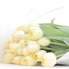 @Home (1) (*Twinkel*'s photostream) Tags: yellow paper soft tulips tulip thuis nophotoshop papier keuken geel tulpen tulp geenphotoshop allereactieszijnwelkom