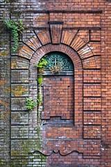 Briques (Gerard Hermand) Tags: street old england plants green london motif wall canon town pattern bricks vert londres angleterre rue mur ville vieux plantes briques formatportrait eos40d 1004273665 gerardhermand