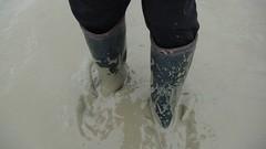Zwarte Polders (Hollande) (WelliesWalker) Tags: sea mer holland sand mud sable wellies paysbas bottes digue boue