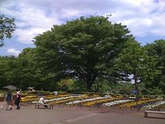 2010/05/15