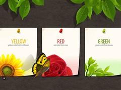 Spring Imagination Wallpaper