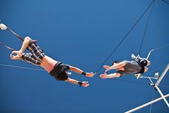 Trapeze 101 Class