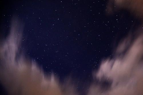 IMG_3116-w Night