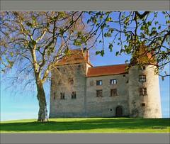 Château de Septème (LauterGold) Tags: france castle schloss vienne isère rhônealpes chteau septème leuropepittoresque châteaudeseptème
