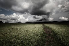 (scifitographer) Tags: sky storm field grass june clouds canon virginia path journey va shenandoah 2009 canon1740mml bethanthony 5dmkii retroreflectography