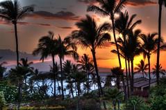 from the lanai (kxuser) Tags: world ocean travel pink trees sunset vacation orange usa silhouette digital america hawaii michael blog high dynamic pentax united scenic maui palm processing imaging states range hdr wailea k7 photomatix michaelleskar leskar kxuser