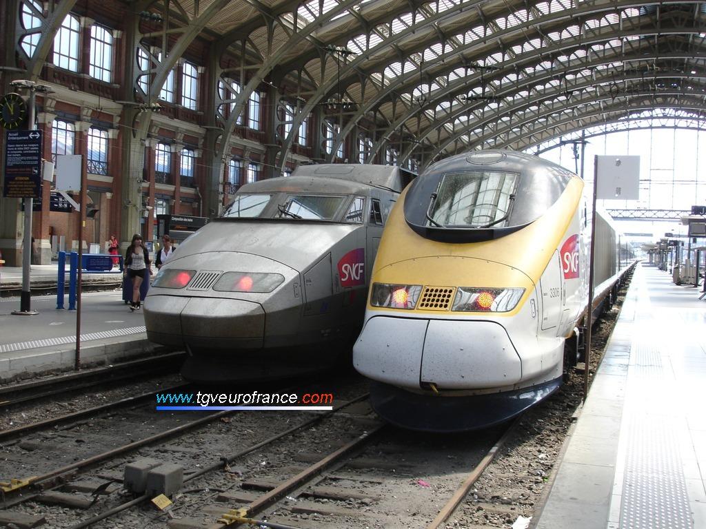 La rame TGV NOL 3306 SNCF et la rame TGV SE 09 SNCF à Lille Flandres