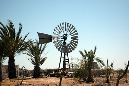 Wind power generation, not just for the poor any more, alternative energy wheel, large palms, desert, pump, Baja California Sur, Mexico